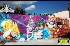 DBZ-fighting-graffiti-SUOZ-C52-customsz-worldwide-SITE-LOW-RESOLUTION