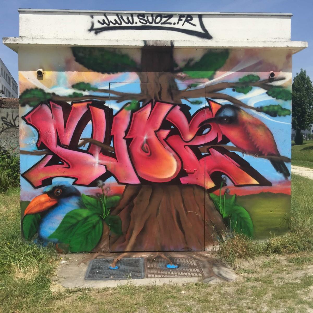 graffiti-tag-nature-suoz-deco-decoration-graff-la-rochelle-devis-ENGIE-erdf