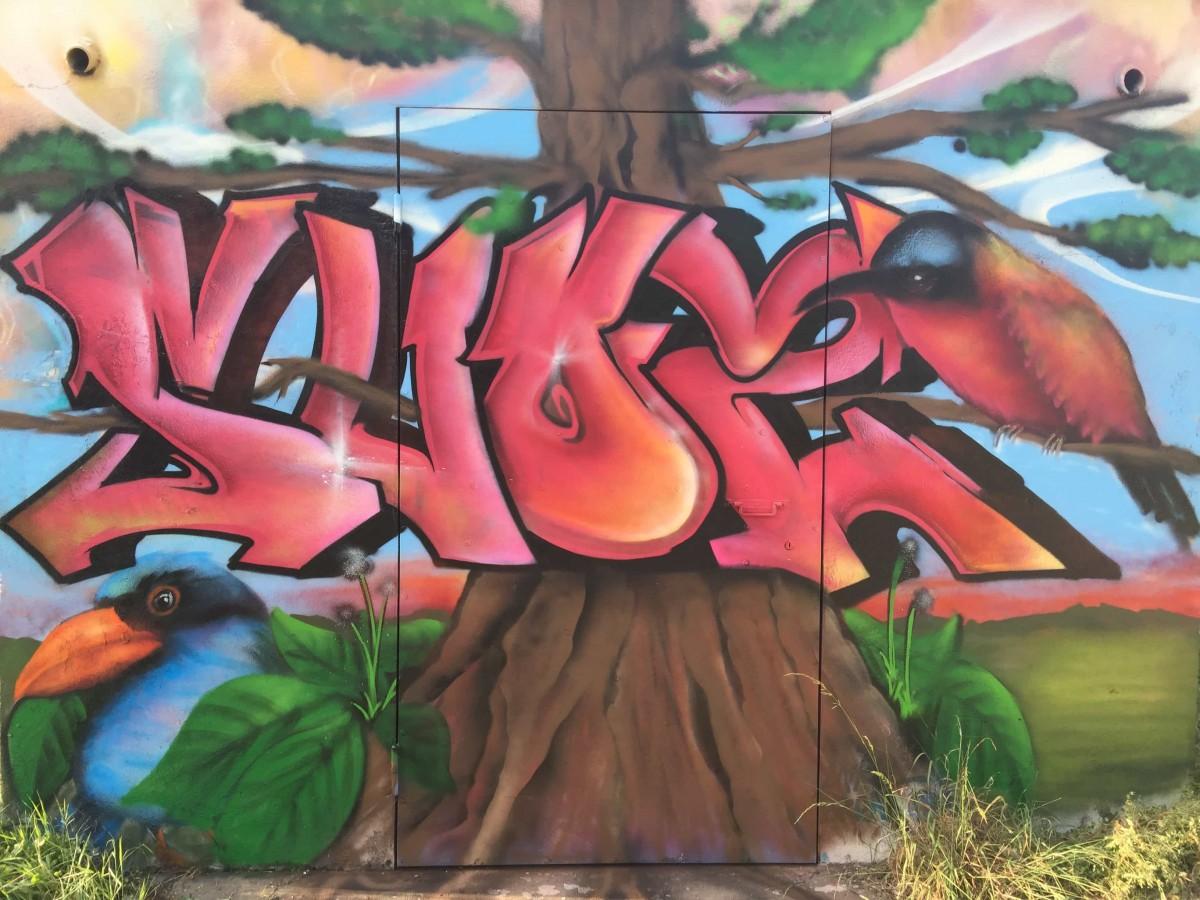 graffiti-tag-nature-suoz-decoration-graff-la-rochelle-deco-peinture-graff-france-VEC