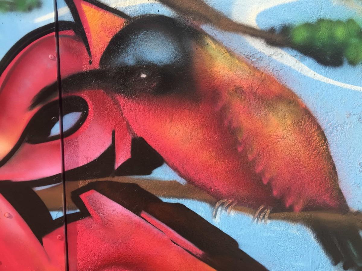graffiti-tag-nature-suoz-decoration-graff-la-rochelle-deco-peinture-graff-rochefort-17