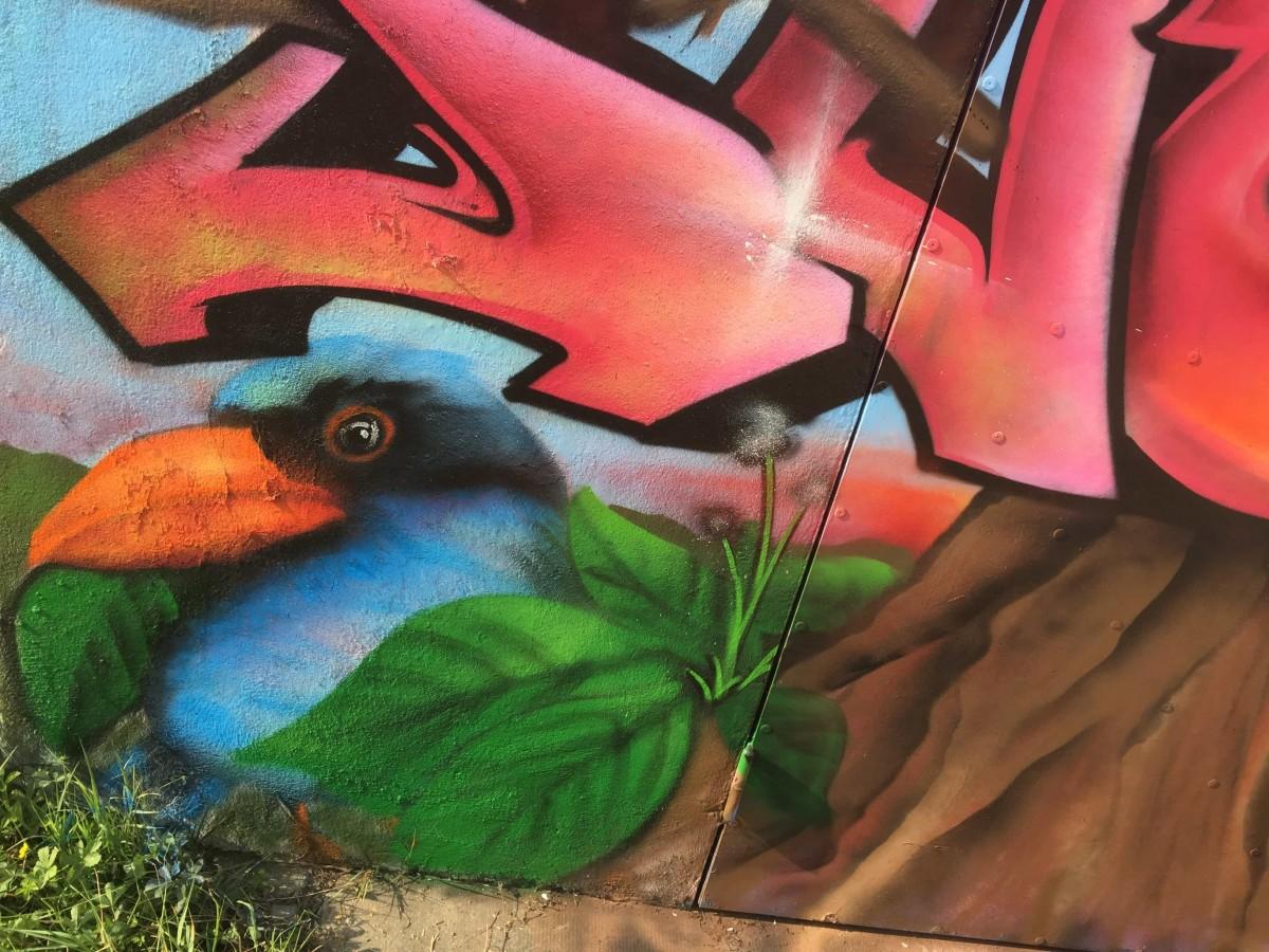 graffiti-tag-nature-suoz-decoration-graff-la-rochelle-deco-peinture-graff