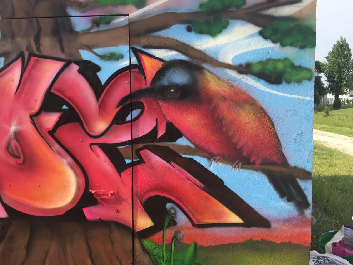 graffiti-tag-nature-suoz-decoration-graff